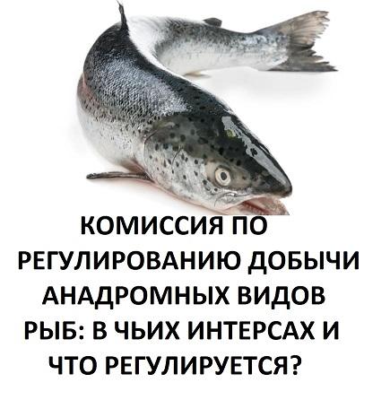 Решения Комиссии по регулированию добычи (вылова) анадромных видов рыб в Камчатском крае: кто и как принимает решения и как их обжаловать?