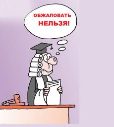 Судья районного суда Камчатского края назначил себя последней инстанцией в судебных спорах