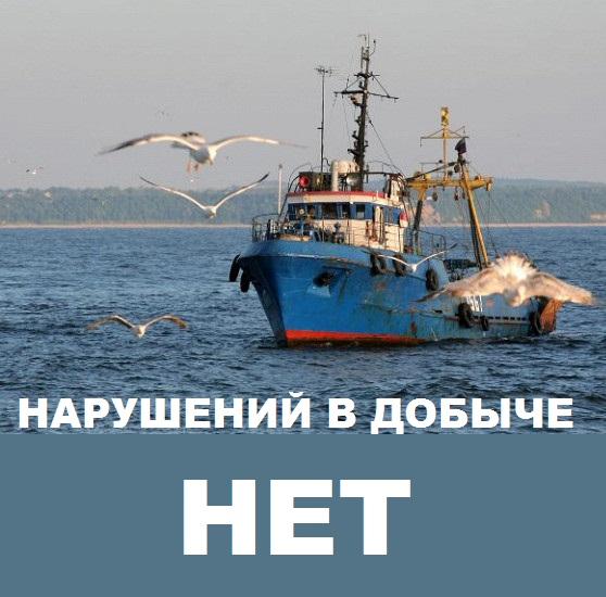 Суд не нашел состава правонарушения ни в действиях капитанов судов, ни в действиях юридических лиц